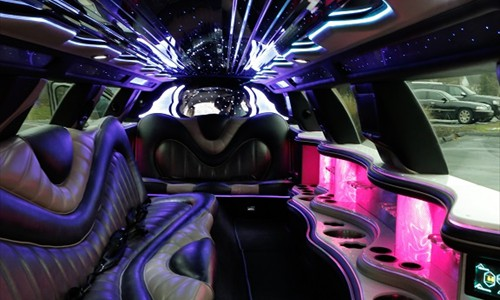 fourteen 14 passenger stretch limo inside